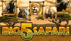 Big 5 Safari