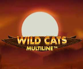 wildcats Multiline